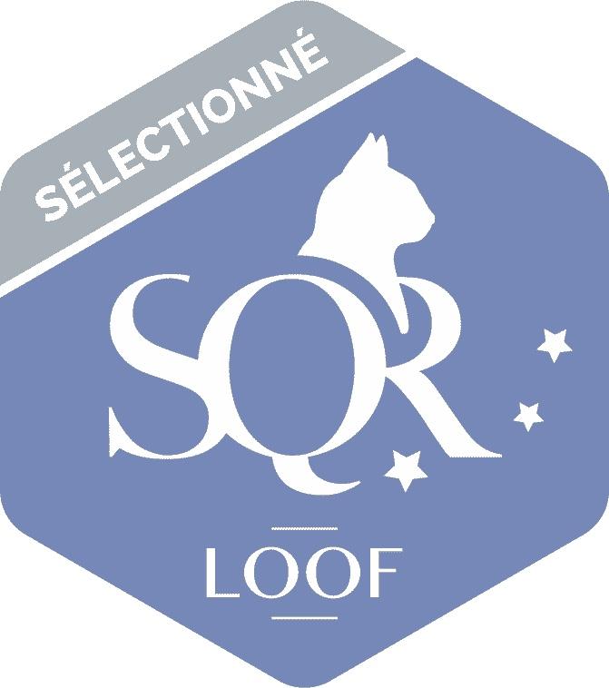 SQR Sélectionné