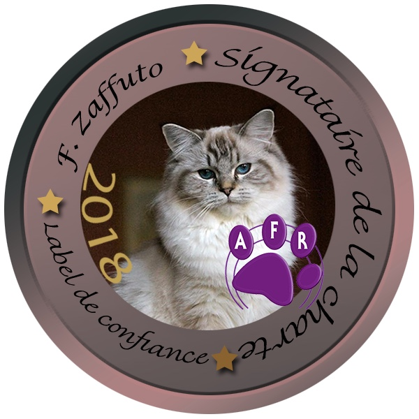 label AFR (association ragdoll) 2018